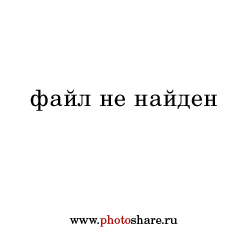 2014 My Photo Year. 2263 (Личные)